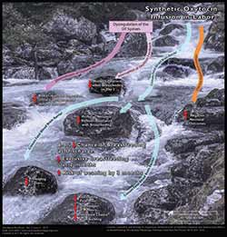 Downstream Graphic